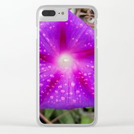 morning, glory Clear iPhone Case