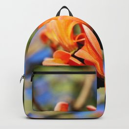 Morning Flame Backpack