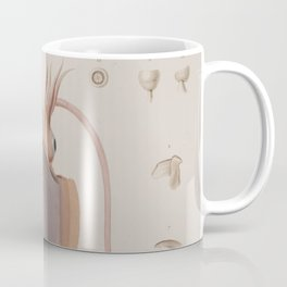 Vintage Biological Illustration of a Squid (1835) Coffee Mug