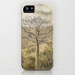 Ceiba Tree at Forest Guayas Ecuador iPhone Case