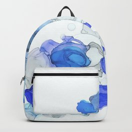 A D 2 Backpack