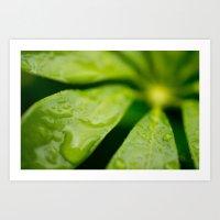 jamaica Art Prints featuring Jamaica Greenery by Heartland Photography By SJW