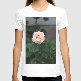 Flower Photography by Raspopova Marina T-shirt