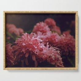 Pink Bellingrath Floral Serving Tray