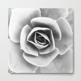 Succulent Photo | Black and White Metal Print