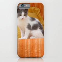 Cute Kitty iPhone Case