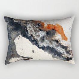 Peeling Paint Rectangular Pillow