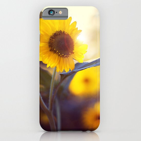 Sunflowers iPhone & iPod Case