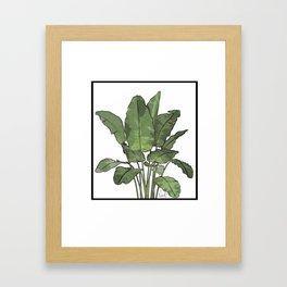 You're Bananas Framed Art Print