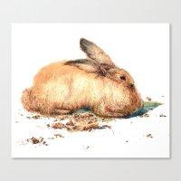 bunny Canvas Prints featuring Bunny by Ivanka Costru
