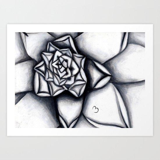 Light and Dark Succulent Art Print