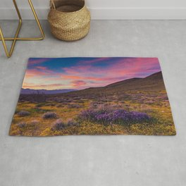 Desktop Wallpapers California USA Mojave Desert Nature Hill Lavandula Ranunculus Sunrises and sunsets lavender spearworts buttercups sunrise and sunset Rug