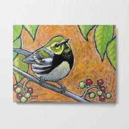 Black Throated Green Warbler Metal Print