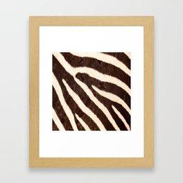 Zebra #society6 #buyart Framed Art Print