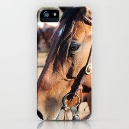 Horse-1 iPhone Case