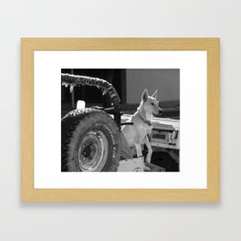 Jeep Dog Framed Art Print