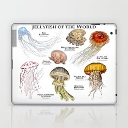 Jellyfish of the World Laptop & iPad Skin
