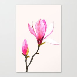 magnolia watercolor painting Canvas Print