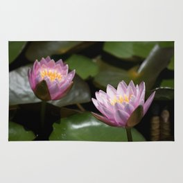 Longwood Gardens - Spring Series 283 Rug