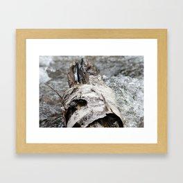 Cedar Log Framed Art Print