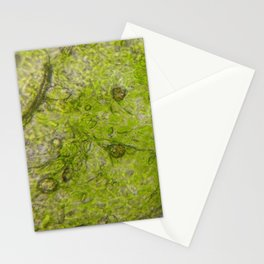 i'm a leaf Stationery Cards