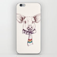 Pig and scarf iPhone & iPod Skin