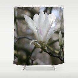 real magnolias Shower Curtain