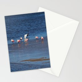 The Spoonbill Legend Lingers II Stationery Cards
