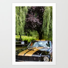 by the willow tree Art Print