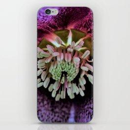 Purple Hellebore iPhone Skin