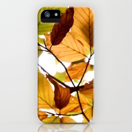 Autumn moments by Janina iPhone Case