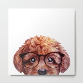 Toy poodle reddish brown with glasses Metal Print