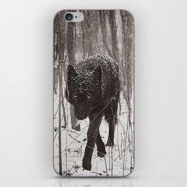 Snow Wolf iPhone Skin