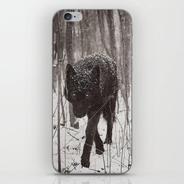 Snow Wolf iPhone Skin