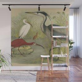 Water Birds Wall Mural