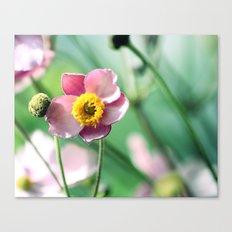 sunny flower ☀ Canvas Print