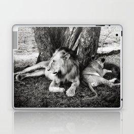 African Safari Lion Laptop & iPad Skin