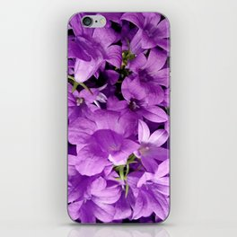 Campanula flowers as a background iPhone Skin