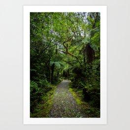 Jungle Path Art Print