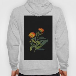 Calendula Officinalis Mary Delany Floral Flower Paper Collage Delicate Vintage Black Background Hoody