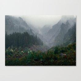 Muddy Fork Canvas Print