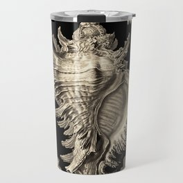 Ernst Haeckel Prosobranchia Sea Shells Travel Mug