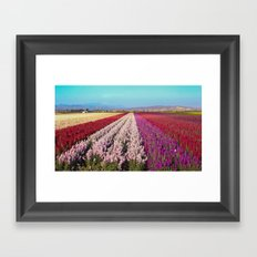 Flower Field Framed Art Print