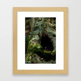 Hidden Home #1 Framed Art Print