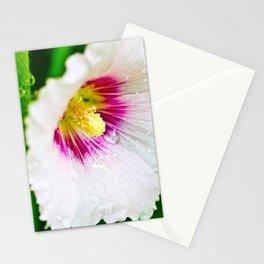 White Hollyhock Stationery Cards