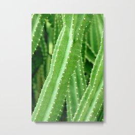 Green Cactus Photography Metal Print