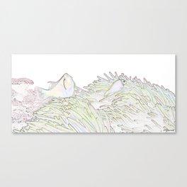 BLEACHED CLOWNS Canvas Print