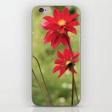 Red... iPhone & iPod Skin