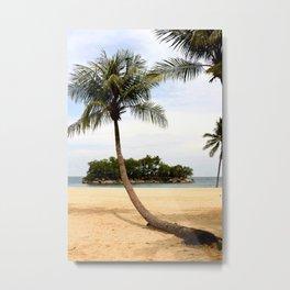 Palm Tree on a Sandy Beach Metal Print