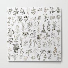 Drwaing Nature Metal Print